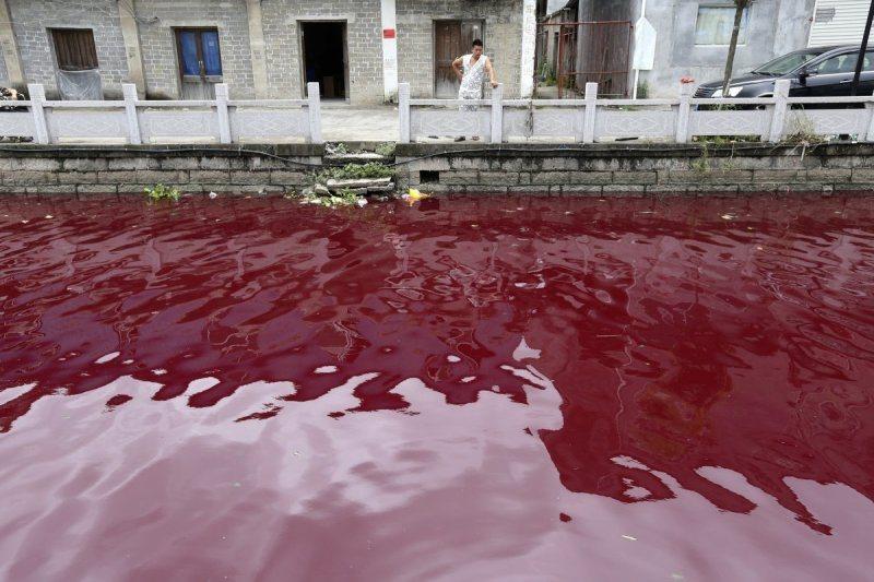 Homme regarde riviére contaminée Wenzhou