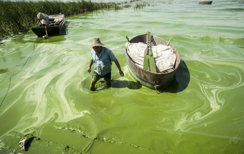 Un pêcheur embourbé dans le slime vert